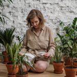 Zorg voor tropische sferen in huis